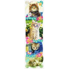 Закладки Кошки