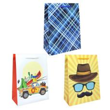 Сумка(пакет) картон 18*24*8см ассорти мужской - мужской вид